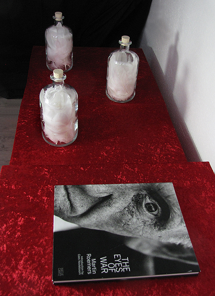 In the eyes of war - Installation (Detail)